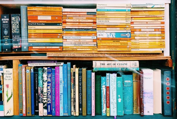 Mentors' Bookshelf Picks
